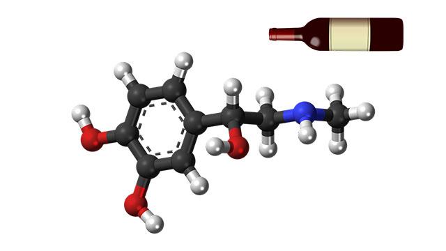 Una molécula de vino tinto podría servir para prevenir el Alzheimer