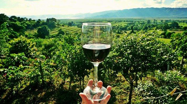 Consejos para catar un vino
