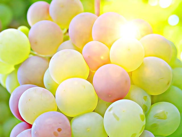 De que se componen las uvas del vino
